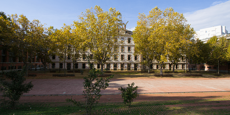 Alliance-Francaise-Toulouse